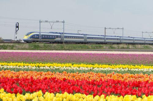 Eurostar Amsterdam timetable emerges - International Railway Journal